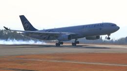 ふじいあきらさんが、広島空港で撮影したガルーダ・インドネシア航空 A330-341の航空フォト(飛行機 写真・画像)