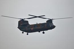 tsubasa0624さんが、習志野演習場で撮影した陸上自衛隊 CH-47Jの航空フォト(飛行機 写真・画像)
