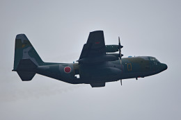 tsubasa0624さんが、習志野演習場で撮影した航空自衛隊 C-130H Herculesの航空フォト(写真)