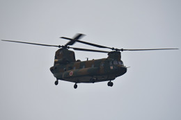 tsubasa0624さんが、習志野演習場で撮影した陸上自衛隊 CH-47JAの航空フォト(写真)