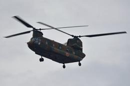 tsubasa0624さんが、習志野演習場で撮影した陸上自衛隊 CH-47JAの航空フォト(飛行機 写真・画像)