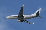 hachiさんが、テッドスティーブンズ・アンカレッジ国際空港で撮影したコノコフィリップス・アヴィエーション・アラスカ 737-7BDの航空フォト(写真)