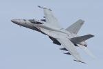 うめやしきさんが、厚木飛行場で撮影したアメリカ海軍 F/A-18E Super Hornetの航空フォト(飛行機 写真・画像)