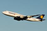 tomo@Germanyさんが、羽田空港で撮影したルフトハンザドイツ航空 747-830の航空フォト(写真)
