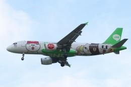turt@かめちゃんさんが、台湾桃園国際空港で撮影したエアアジア A320-216の航空フォト(写真)