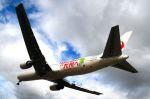 まいけるさんが、伊丹空港で撮影した日本航空 767-346/ERの航空フォト(写真)