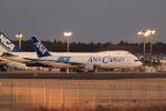 多楽さんが、成田国際空港で撮影した全日空 767-381/ER(BCF)の航空フォト(写真)