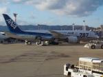 ken1☆MYJさんが、伊丹空港で撮影した全日空 787-8 Dreamlinerの航空フォト(写真)
