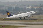 pringlesさんが、チューリッヒ空港で撮影したルフトハンザドイツ航空 A320-211の航空フォト(写真)