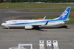 じゃがさんが、新千歳空港で撮影した全日空 737-881の航空フォト(飛行機 写真・画像)