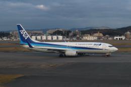 シフォンさんが、福岡空港で撮影した全日空 737-881の航空フォト(飛行機 写真・画像)