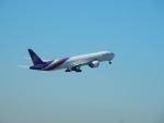 エアキヨさんが、成田国際空港で撮影したタイ国際航空 777-3AL/ERの航空フォト(写真)