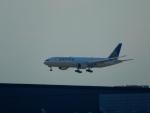 エアキヨさんが、成田国際空港で撮影したユナイテッド航空 777-224/ERの航空フォト(写真)