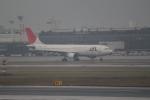 職業旅人さんが、伊丹空港で撮影した日本航空 A300B4-622Rの航空フォト(写真)