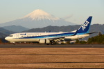 Jason Pengさんが、静岡空港で撮影した全日空 737-881の航空フォト(写真)