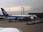 ken1☆MYJさんが、羽田空港で撮影した全日空 787-9の航空フォト(写真)