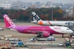 Kuuさんが、福岡空港で撮影したピーチ A320-214の航空フォト(写真)