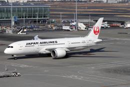 Echo-Kiloさんが、羽田空港で撮影した日本航空 787-8 Dreamlinerの航空フォト(写真)