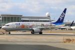 スターアライアンスKMJ まいやんさんが、福岡空港で撮影した全日空 737-881の航空フォト(飛行機 写真・画像)