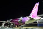 伊丹空港 - Osaka International Airport [ITM/RJOO]で撮影されたピーチ - Peach [MM/APJ]の航空機写真