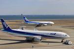 羽田空港 - Tokyo International Airport [HND/RJTT]で撮影された全日空 - All Nippon Airways [NH/ANA]の航空機写真