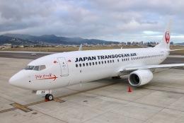 ホノルル国際空港 - Honolulu International Airport [HNL/PHNL]で撮影された日本トランスオーシャン航空 - Japan Transocean Air [NU/JTA]の航空機写真