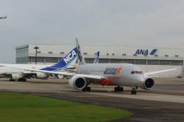 しんさんが、成田国際空港で撮影したジェットスター 787-8 Dreamlinerの航空フォト(写真)
