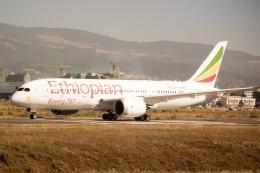 Salamさんが、ボレ国際空港で撮影したエチオピア航空 787-8 Dreamlinerの航空フォト(飛行機 写真・画像)