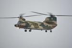 kumagorouさんが、久米島空港で撮影した航空自衛隊 CH-47J/LRの航空フォト(写真)