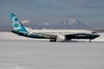 北の熊さんが、新千歳空港で撮影したボーイング 737-8-MAXの航空フォト(写真)
