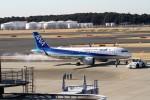 RUNWAY24さんが、成田国際空港で撮影した全日空 A320-271Nの航空フォト(写真)