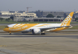 RA-86141さんが、ドンムアン空港で撮影したスクート (〜2017) 787-8 Dreamlinerの航空フォト(飛行機 写真・画像)