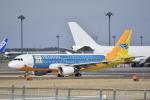LEGACY-747さんが、成田国際空港で撮影したセブパシフィック航空 A320-214の航空フォト(写真)
