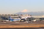 cherrywing787さんが、羽田空港で撮影した全日空 787-8 Dreamlinerの航空フォト(写真)