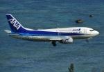 おっつんさんが、新石垣空港で撮影したANAウイングス 737-54Kの航空フォト(飛行機 写真・画像)