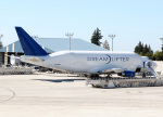 voyagerさんが、ペインフィールド空港で撮影したボーイング 747-4H6(LCF) Dreamlifterの航空フォト(写真)