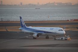 Kanatoさんが、羽田空港で撮影した全日空 A321-131の航空フォト(飛行機 写真・画像)
