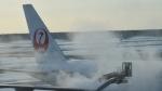 Take51さんが、新千歳空港で撮影した日本航空 777-289の航空フォト(写真)