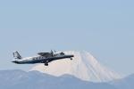 りゅうさんさんが、調布飛行場で撮影した新中央航空 228-212の航空フォト(写真)