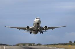 プレミアムさんが、宮古空港で撮影した全日空 737-881の航空フォト(飛行機 写真・画像)