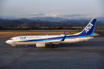 kumagorouさんが、静岡空港で撮影した全日空 737-881の航空フォト(写真)