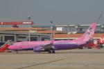 AkilaYさんが、ドンムアン空港で撮影したサイアム・エア 737-86Jの航空フォト(飛行機 写真・画像)