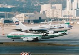 NH642さんが、啓徳空港で撮影した中国西北航空 A310-222の航空フォト(飛行機 写真・画像)