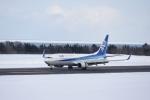 シャークレットさんが、紋別空港で撮影した全日空 737-881の航空フォト(写真)