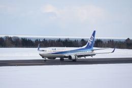 シャークレットさんが、紋別空港で撮影した全日空 737-881の航空フォト(飛行機 写真・画像)