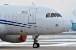 Dojalanaさんが、函館空港で撮影したMINTH グループ A318-112 CJ Eliteの航空フォト(写真)