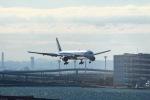 颯平さんが、羽田空港で撮影した全日空 777-381の航空フォト(写真)