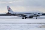 北の熊さんが、新千歳空港で撮影したサニー・グループ A319-115CJの航空フォト(写真)