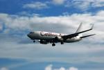 空飛ぶぽん吉☆さんが、プリンセス・ジュリアナ国際空港で撮影したカリビアン航空 737-8HOの航空フォト(写真)