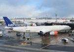 nagashima0926さんが、ニューアーク・リバティー国際空港で撮影したスカンジナビア航空 A330-343Xの航空フォト(写真)